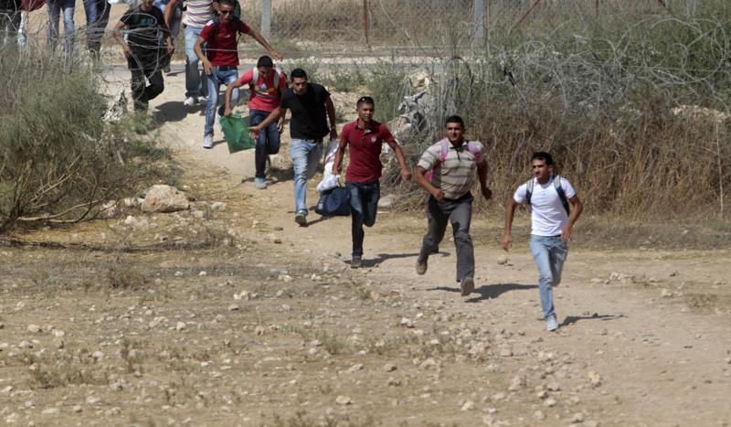 التهريب إلى تركيا.. رحلة السوريين مابين الحياة والموت